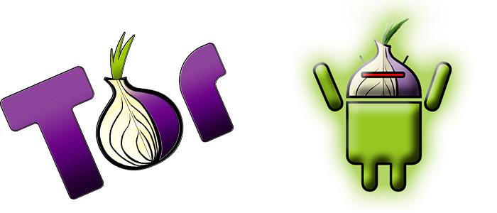 Как установить тор браузер на телефон hudra tor browser for iphone 6 попасть на гидру